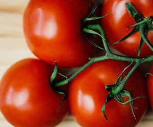 How To Avoid Blossom End Rot On Tomatoes